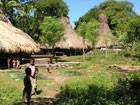 Bild von Sumba Tour 3 - 4 days / 3 nights