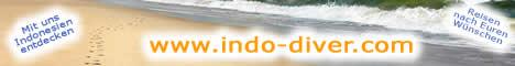 http://www.indo-diver.com