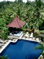Bild von Nicks Hidden Cottages Ubud (Videos)
