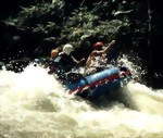 Bild von 07 DAYS / 06 NIGHTS MEDAN – BUKIT LAWANG TRACKING AND RAFTING A