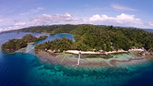Bild von Kadidiri Paradise Resort & Dive Center